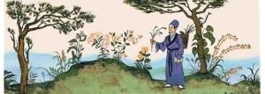 medicina tradicional china